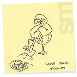 Gooseburyyogurt