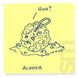 Aloofa