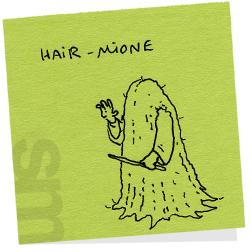 Hairmione