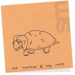 Tortoiseandthehair