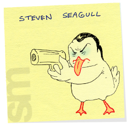Stevenseagull