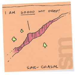 Sarchasm