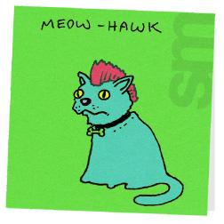 Cat-meowhawk