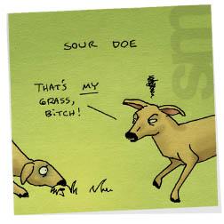 Sourdoe
