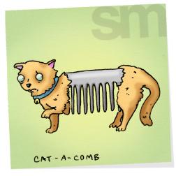 Cat-catacomb