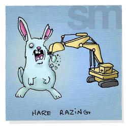 Harerazing