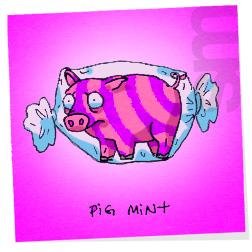 Pigmint