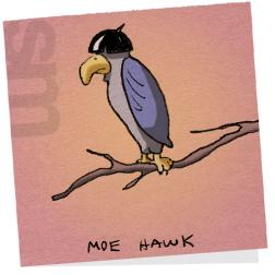 Moehawk