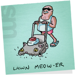 Cat-lawnmeower
