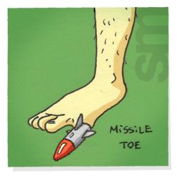 Missiletoe